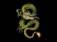 dragon-art-221835