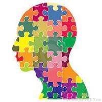 insan puzzle