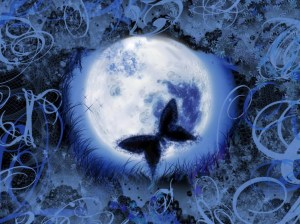 blue-butterfly-design-moon